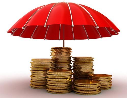 财富双保险